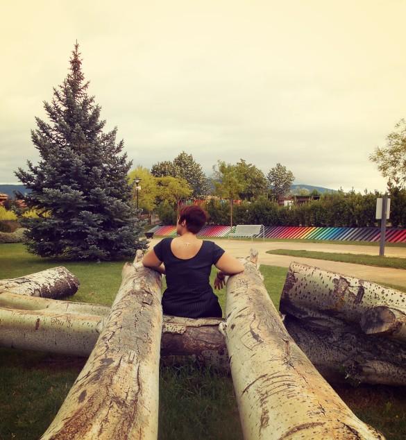 entre troncos